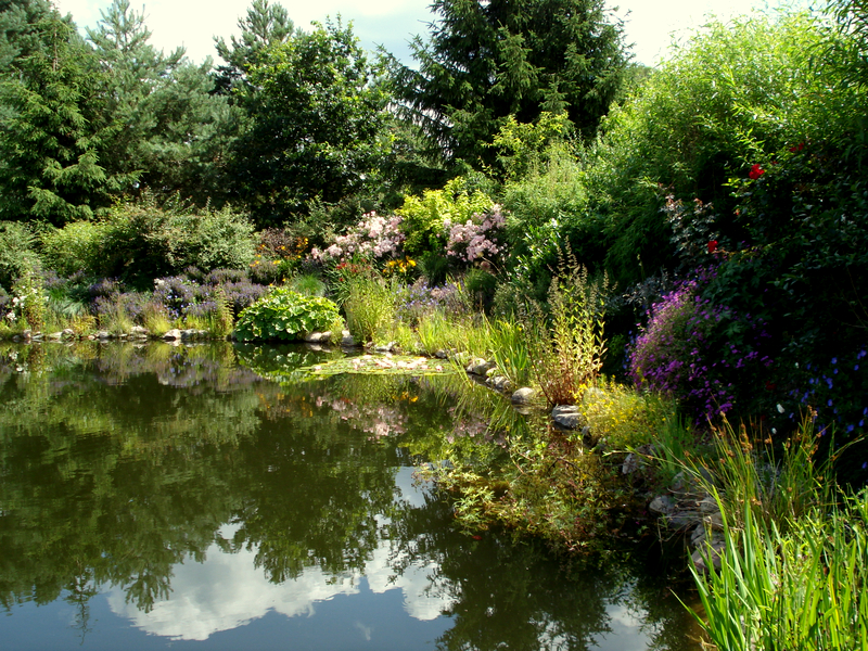 gartenbau, gartengestaltung, gartenplanung, beratung und pflege in, Garten ideen